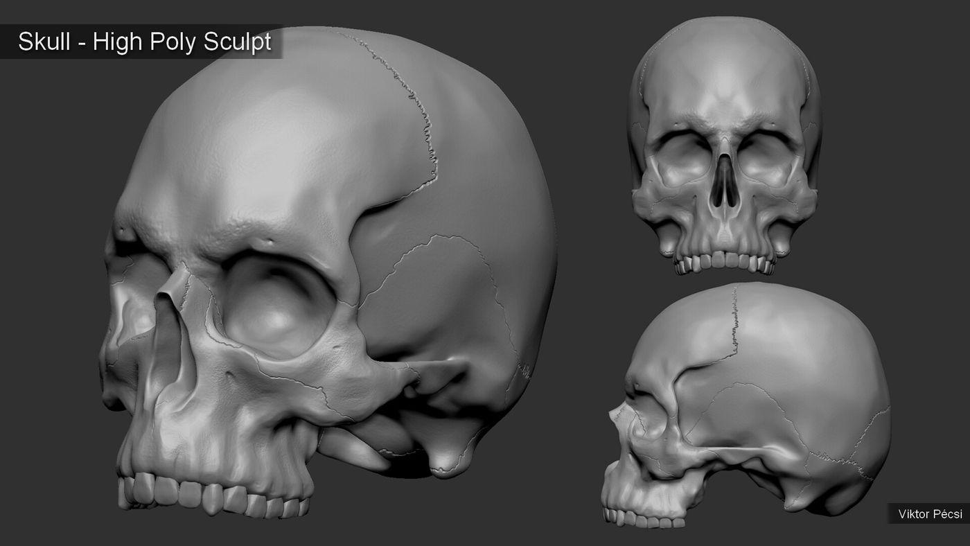 Viktor Pecsi Skull Sculpt Viktorpecsi