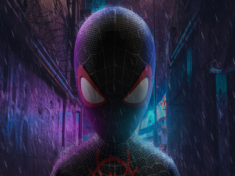 Spider-Man: Into the Spider-Verse=Miles Morales concept