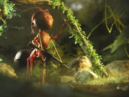 Warrior Ant