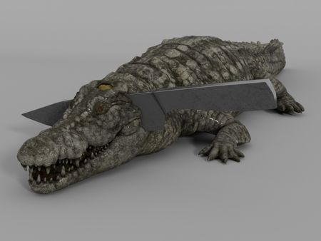 Croc or Cake?