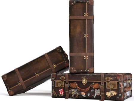 Globetrotter's suitcase