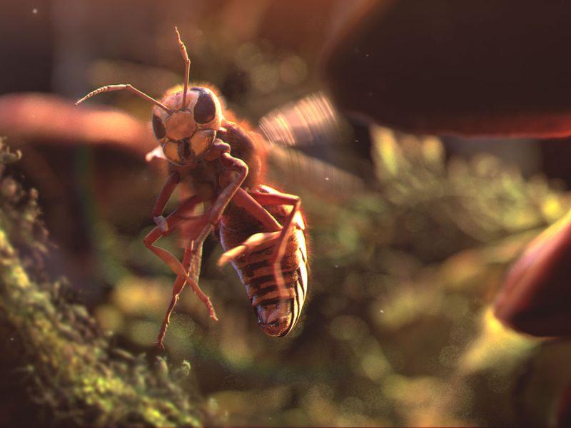 The Hornet