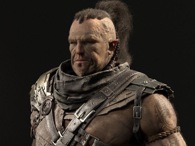 The Ogre Warrior