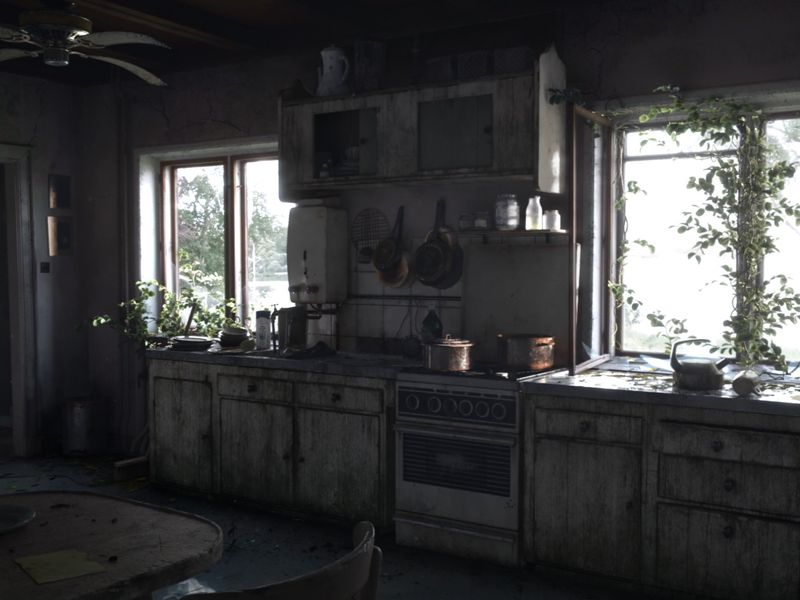Abandoned Kitchen Project