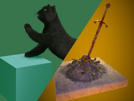 Black cat & Bonefire