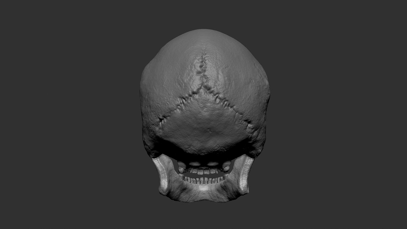 Skull Clay Back Yvyz