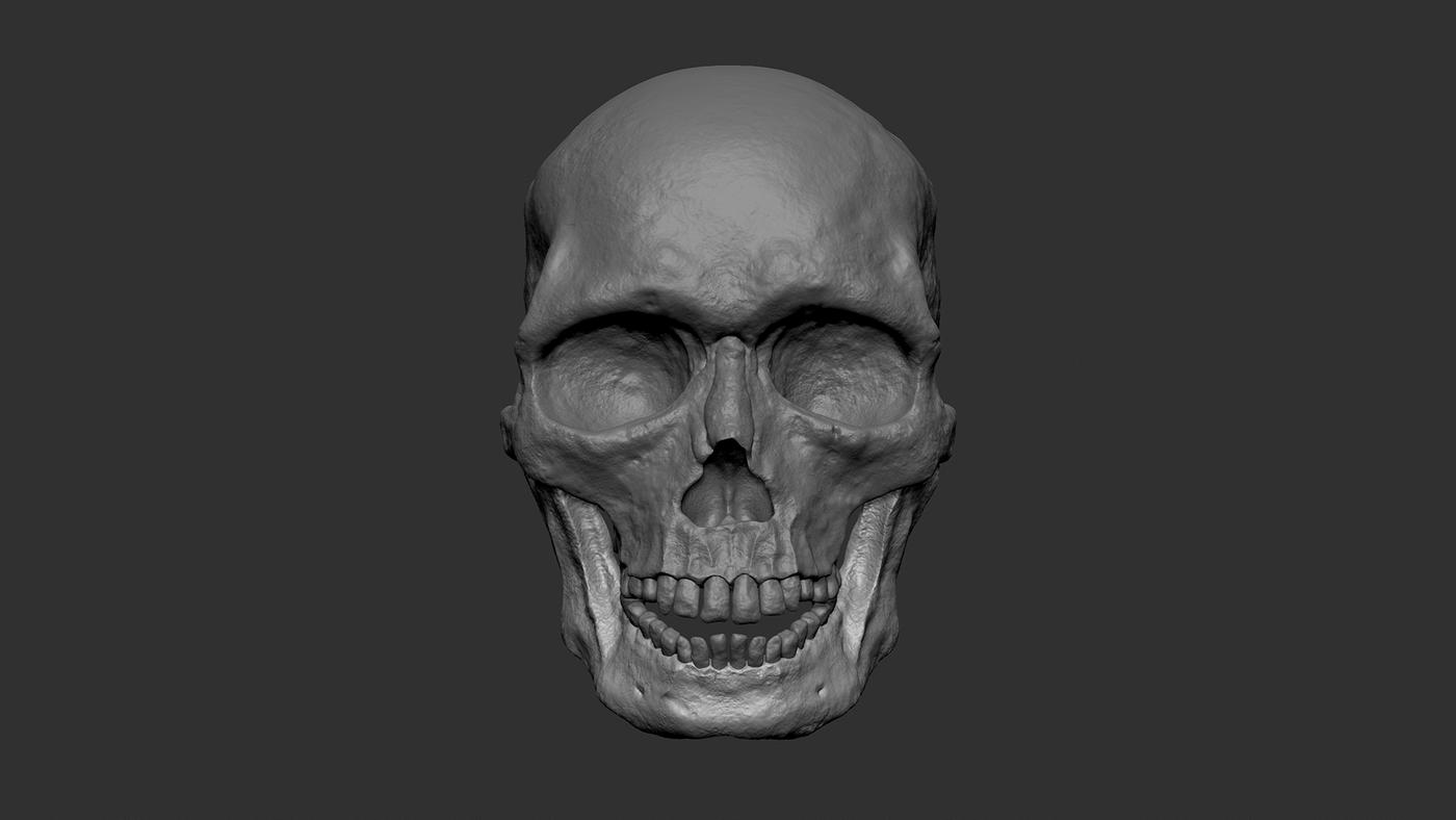 Skull Clay Front Yvyz