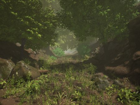 Playable forest in 3D