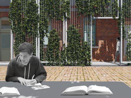 Horseshoe Courtyard Imagery